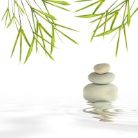 zen_bamboo_rocks_and_garden_200_200